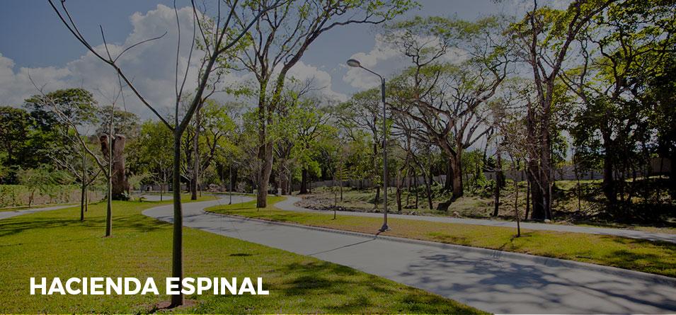 landing-espinal02